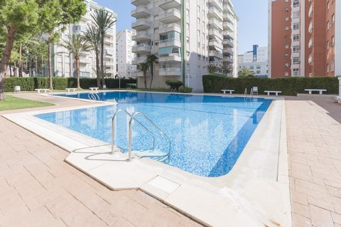 Cozy apartment near the sand beach in Playa de Gandia with shared pool. It sleeps 4 people. The exteriors feature a shared, 20m x 9m chlorine pool with a depth ranging from 1.2m to 1.7m. After a nice day on the beach, swim in the pool or take a refre...