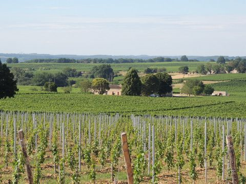 Fully operational and well structured Bordeaux vineyard with owner's house and separate manager's house, an impressive chai with full range of equipment and machinery. The property extends over 26.9 hectares of mature AOC Bordeaux vines producing pre...