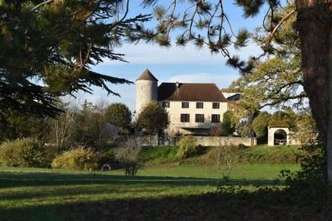 Magnificent 11th century chateau in a pretty village in Perigord at the gates of Bergerac. On this property, covering more than three hectares, a private 9 hole 27 par golf course, a large lake, a large heated 12X6 swimming pool, sauna, six large bed...