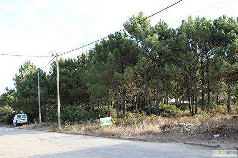 Magnífico lote de terreno em Aljezur. Localizado na zona de Vale da Telha, com 1140m2 e para construção de moradia até 250m2. Excelente oportunidade.