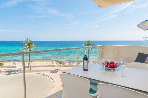 In the very first line of Cala Millor beach, this astonishing apartment welcomes 4 guests. Do you think it is possible a better place to spend a pleasant and quiet holiday than in this great apartment facing the sea? The terrace invites you to have a...