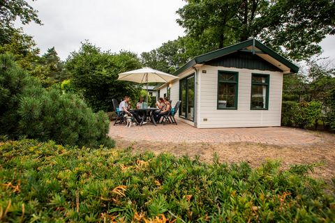 This recreational park is a wonderful family holiday park that is ideal for nature lovers, peace-seekers and young families. The park comprises an area of 15 hectares and is situated on the edge of the nature of Ede. The park lies on the north side o...