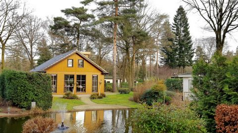 Cycling, hiking, playing, swimming and much more amidst the woods. This holiday park borders with the nature area Veluwe near Ede. It offers all sorts of facilities for both young and old. The kids can enjoy themselves in the playgrounds, the heated ...