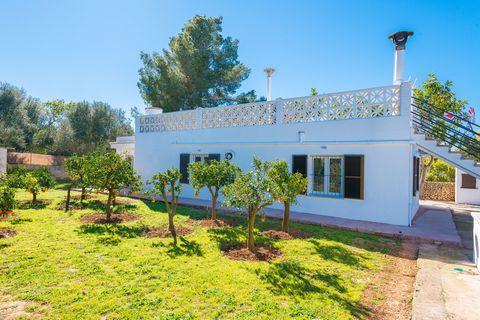 Bonita casa de campo, a las afueras de Llucmajor, donde 4 personas encuentran un hogar tranquilo a menos de 12 km de la playa. Con una construcción de estilo veraniego envuelta entre un bonito terreno, repleto de limoneros y naranjos, esta acogedora ...